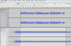 Sound wave forms in an editing software's interface.